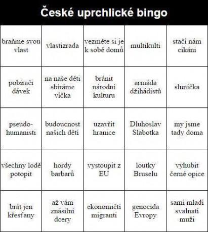 Imigrantské bingo
